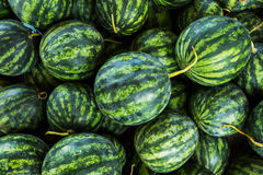 Sluit omhoog groene watermeloen royalty-vrije stock fotografie