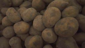 Sluit omhoog Groenten en Vruchten stock videobeelden