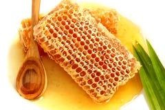 Sluit omhoog heerlijke gouden honingraat op witte achtergrond. Voorraad ph Royalty-vrije Stock Foto's