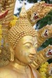 Sluit omhoog, het gouden standbeeld van Boedha Royalty-vrije Stock Foto's