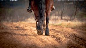 Sluit omhoog hoeven van paard, lopend langs de weg royalty-vrije stock foto
