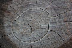 Sluit omhoog houten textuur Royalty-vrije Stock Foto