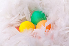 Kleurrijke paaseieren in witte veer Royalty-vrije Stock Foto