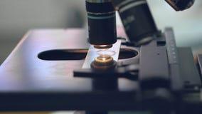 Sluit omhoog Laboratoriumtechnicus die door een microscoop, close-upschot kijken stock video