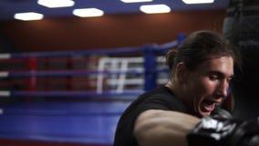 Sluit omhoog lengte van bepaald, raakt de agressieve bokser in zwarte T-shirt in dozen doende peer Een boze bokser zet een stempe stock footage