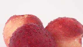 Sluit omhoog macro van drie verse nectarines met waterdalingen die op een draailijst roteren stock video