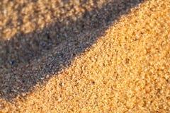 Sluit omhoog macrotextuur van zandduin Royalty-vrije Stock Fotografie
