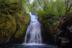 Sluit omhoog mening van Bruidssluierdalingen, Oregon stock afbeelding