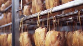 Sluit omhoog mening van de kippen die in de automatische rokende machine van China worden gerookt Ongezonde kost, smakelijke prod stock videobeelden