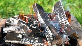 Sluit omhoog mening van heet brandend brandhout stock video