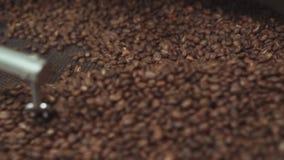 Sluit omhoog mening van het mengen van geroosterde koffiebonen Het traditionele koffie roosteren Verse geroosterde koffiebonen di stock videobeelden