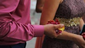 Sluit omhoog mening van mensenhand met handvol van roze bloemblaadjes en rijst stock video
