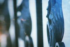 Sluit omhoog mening van metaalomheining, geschilderd zwart ijzer gesmeed rooster rond de tuin stock afbeeldingen