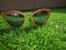Sluit omhoog mening van zonnebril zittend op het gras stock foto's