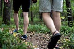 Sluit omhoog mensenbenen lopend in de herfstbos op een het kamperen wandelingsreis stock fotografie