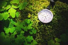 Sluit omhoog met de hand gemaakt houten kompas, boomschaduwen op de groene grond van het aardgras vakantieavontuur in boskompas royalty-vrije stock foto's