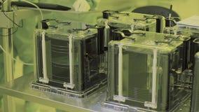 Sluit omhoog nano technologie van de microchipproductie microprocessor steriele atmosfeer schone streek high-tech productie stock video