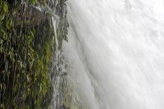 Sluit omhoog onderaan Waterval met het Druipen Groene Cliffside Royalty-vrije Stock Foto