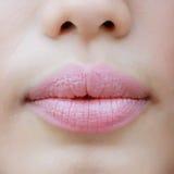 Sluit omhoog ontsproten detail van het gezicht van mooie jonge vrouwen met stock afbeeldingen