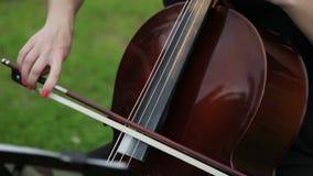 Sluit omhoog op de koorden van cello het trillen stock video