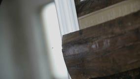 Sluit omhoog op zaag scherp hout stock videobeelden