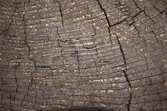 Sluit omhoog oude houten oppervlaktetextuur Royalty-vrije Stock Foto