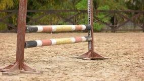 Sluit omhoog paard springend over hindernis stock footage