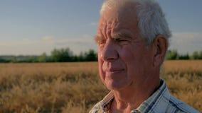 Sluit omhoog portret van een bejaarde Kaukasische landbouwer op een tarwegebied stock video