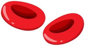 Sluit omhoog rode bloedcellen vector illustratie