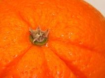 Sluit omhoog sinaasappel Stock Foto's