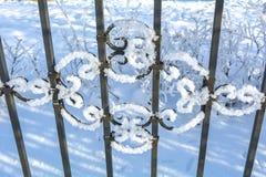Sluit omhoog sneeuw decoratief rooster royalty-vrije stock foto