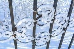 Sluit omhoog sneeuw decoratief rooster stock foto