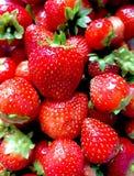 Sluit omhoog van aardbeien Royalty-vrije Stock Afbeeldingen