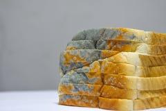 Sluit omhoog van beschimmeld brood op witte achtergrond, verliep kan niet any more eten omdat het voor gezondheid schadelijk is royalty-vrije stock afbeelding