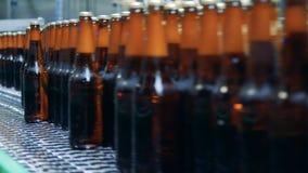 Sluit omhoog van bruine glazige die flessen met bier worden gevuld die zich langs de vervoerdersriem bewegen stock video