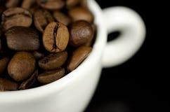 Sluit omhoog van bruine koffiebonen in een witte mok. royalty-vrije stock afbeelding