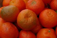 Sluit omhoog van clementines Stock Afbeeldingen