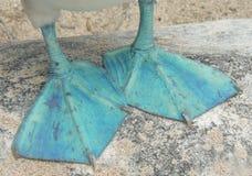 Sluit omhoog van de blauw-Betaalde voeten van de domoor Royalty-vrije Stock Foto