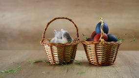 Sluit omhoog van de holdingsei van de jongens` s hand en borstel, Kleuringseieren voor Pasen stock video