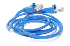 Sluit omhoog van de Kabel en de Stoppen van het Netwerk Royalty-vrije Stock Foto