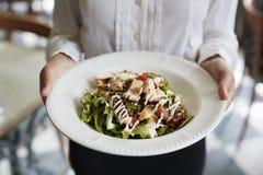 Sluit omhoog van de Kippensalade van Serveersterholding plate of in Restaurant royalty-vrije stock afbeeldingen