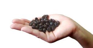 Sluit omhoog van de koffiebonen van de persoonsholding in handen Royalty-vrije Stock Foto
