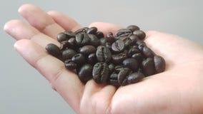 Sluit omhoog van de koffiebonen van de persoonsholding in handen Stock Afbeelding