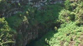 Sluit omhoog van de muur van een gootsteengat op islasanta cruz in de Galapagos stock videobeelden