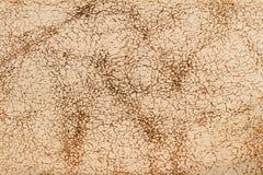 Sluit omhoog van de textuur van het roomleer stock afbeeldingen