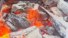 Sluit omhoog van de vlammen van de kampbrand en brand stock video