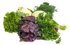 Sluit omhoog van diverse kleurrijke rauwe groenten op witte achtergrond Stock Afbeelding