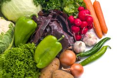 Sluit omhoog van diverse kleurrijke rauwe groenten op witte achtergrond Royalty-vrije Stock Afbeeldingen