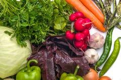 Sluit omhoog van diverse kleurrijke rauwe groenten op witte achtergrond Royalty-vrije Stock Fotografie