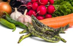 Sluit omhoog van diverse kleurrijke rauwe groenten op witte achtergrond Royalty-vrije Stock Foto